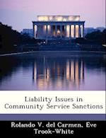 Liability Issues in Community Service Sanctions af Rolando V. Del Carmen, Eve Trook-White