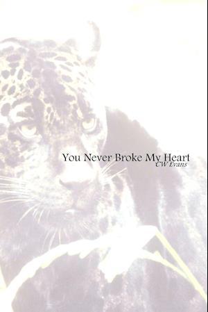 You Never Broke My Heart