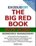 Big Red Book - Bite Sized - Workforce Management
