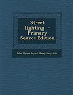 Street Lighting - Primary Source Edition af John Myron Bryant, Harry Gray Hake