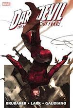 Daredevil By Ed Brubaker & Michael Lark