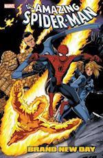 Spider-Man Brand New Day 3 (Spider-Man)
