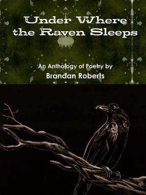 Bog, hæftet Under Where the Raven Sleeps af Brandan Roberts