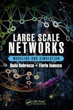 Large Scale Networks af Radu Dobrescu, Florin Ionescu