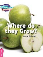 Where Do they Grow? Pink B Band