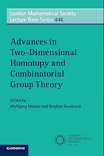 Advances in Two-Dimensional Homotopy and Combinatorial Group Theory (LONDON MATHEMATICAL SOCIETY LECTURE NOTE SERIES, nr. 446)