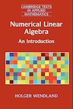 Numerical Linear Algebra (Cambridge Texts in Applied Mathematics, nr. 56)