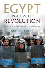 Egypt in a Time of Revolution (Cambridge Studies in Contentious Politics)