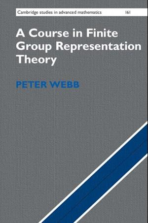 Course in Finite Group Representation Theory