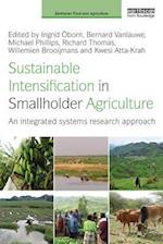 Sustainable Intensification in Smallholder Agriculture (Earthscan Food and Agriculture)