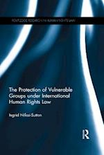 Protection of Vulnerable Groups under International Human Rights Law (Routledge Research in Human Rights Law)