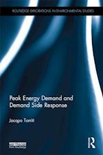 Peak Energy Demand and Demand Side Response (Routledge Explorations in Environmental Studies)