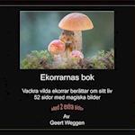 Ekorrarnas BOK af Geert Weggen