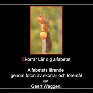 Bog, paperback Ekorrar Lar Dig Alfabetet af Geert Weggen
