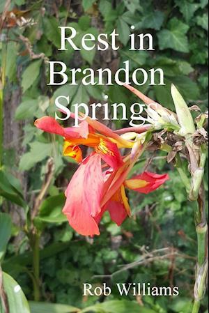 Rest in Brandon Springs