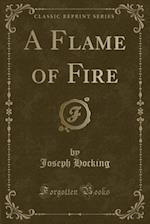 A Flame of Fire (Classic Reprint)