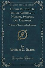 Up the Baltic; Or Young America in Norway, Sweden, and Denmark: A Story of Travel and Adventure (Classic Reprint)