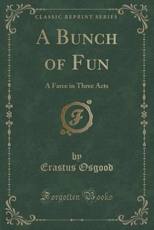 Bog, paperback A Bunch of Fun af Erastus Osgood
