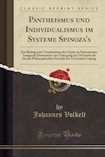 Pantheismus Und Individualismus Im Systeme Spinoza's