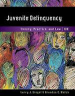 Juvenile Delinquency af Larry J. Siegel, Brandon C. Welsh