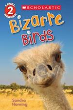 Bizarre Birds (Scholastic Readers)