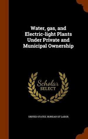 Water, Gas, and Electric-Light Plants Under Private and Municipal Ownership