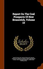 Report On The Coal Prospects Of New Brunswick, Volume 13