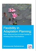 Flexibility in Adaptation Planning