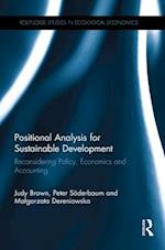 Positional Analysis for Sustainable Development (Routledge Studies in Ecological Economics)