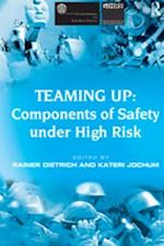 Teaming Up: Components of Safety Under High Risk