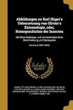 Abbildungen Zu Karl Illiger's Uebersetzung Von Olivier's Entomologie, Oder, Naturgeschichte Der Insecten af Jakob 1771-1848 Sturm