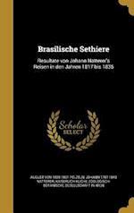 Brasilische Sethiere af August Von 1825-1891 Pelzeln, Johann 1787-1843 Natterer