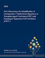 NotI Microarrays for Identification of Chromosome 3 Methylation Signatures in Nasopharyngeal Carcinoma (NPC) and Esophageal Squamous Cell Carcinoma (E