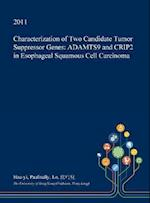Characterization of Two Candidate Tumor Suppressor Genes