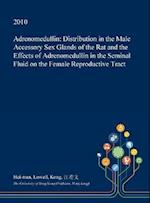 Adrenomedullin: Distribution in the Male Accessory Sex Glands of the Rat and the Effects of Adrenomedullin in the Seminal Fluid on the Female Reproduc