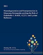 Neurodegeneration and Neuroprotection in Glaucoma Retinopathy-probing the Role of Endothelin-1, RAGE, A{221} and Lycium Barbarum