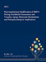 Post-translational Modification of SIRT1 During Endothelial Senescence and Vascular Aging: Molecular Mechanisms and Pathophysiological Implications
