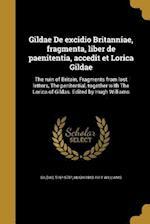 Gildae de Excidio Britanniae, Fragmenta, Liber de Paenitentia, Accedit Et Lorica Gildae af Hugh 1843-1911 Williams