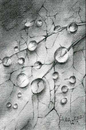 Bog, paperback Fissures af Saraliza Anzaldua