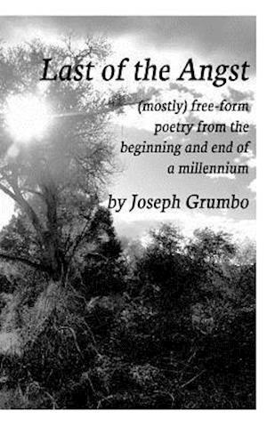 Bog, paperback Last of the Angst (Softcover) af Joseph Grumbo