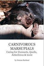 Carnivorous Marsupials - Caring for