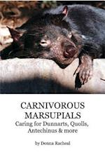 Carnivorous Marsupials - Caring for