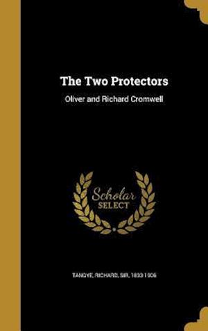 Bog, hardback The Two Protectors