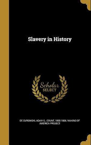 Bog, hardback Slavery in History