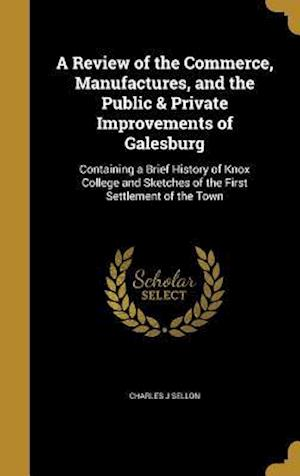 Bog, hardback A Review of the Commerce, Manufactures, and the Public & Private Improvements of Galesburg af Charles J. Sellon