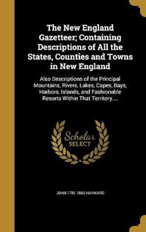 Bog, hardback The New England Gazetteer; Containing Descriptions of All the States, Counties and Towns in New England af John 1781-1869 Hayward