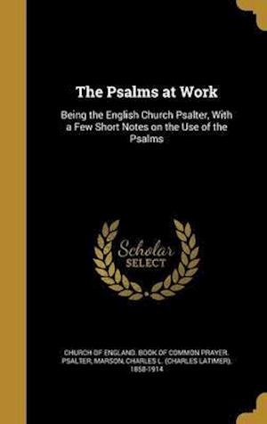 Bog, hardback The Psalms at Work