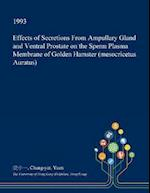 Effects of Secretions From Ampullary Gland and Ventral Prostate on the Sperm Plasma Membrane of Golden Hamster (mesocricetus Auratus)