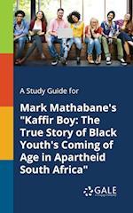A Study Guide for Mark Mathabane's Kaffir Boy
