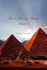 Bric-a-Brac by Brenda: Volume 5